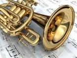 Основные отличия музыкальных инструментов